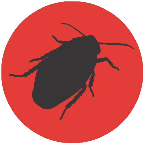 Cockroach-dark-on-red-background